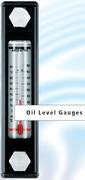 Указатель уровня и температуры Argo Hytos C5.3516-50